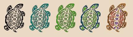 turtle finals