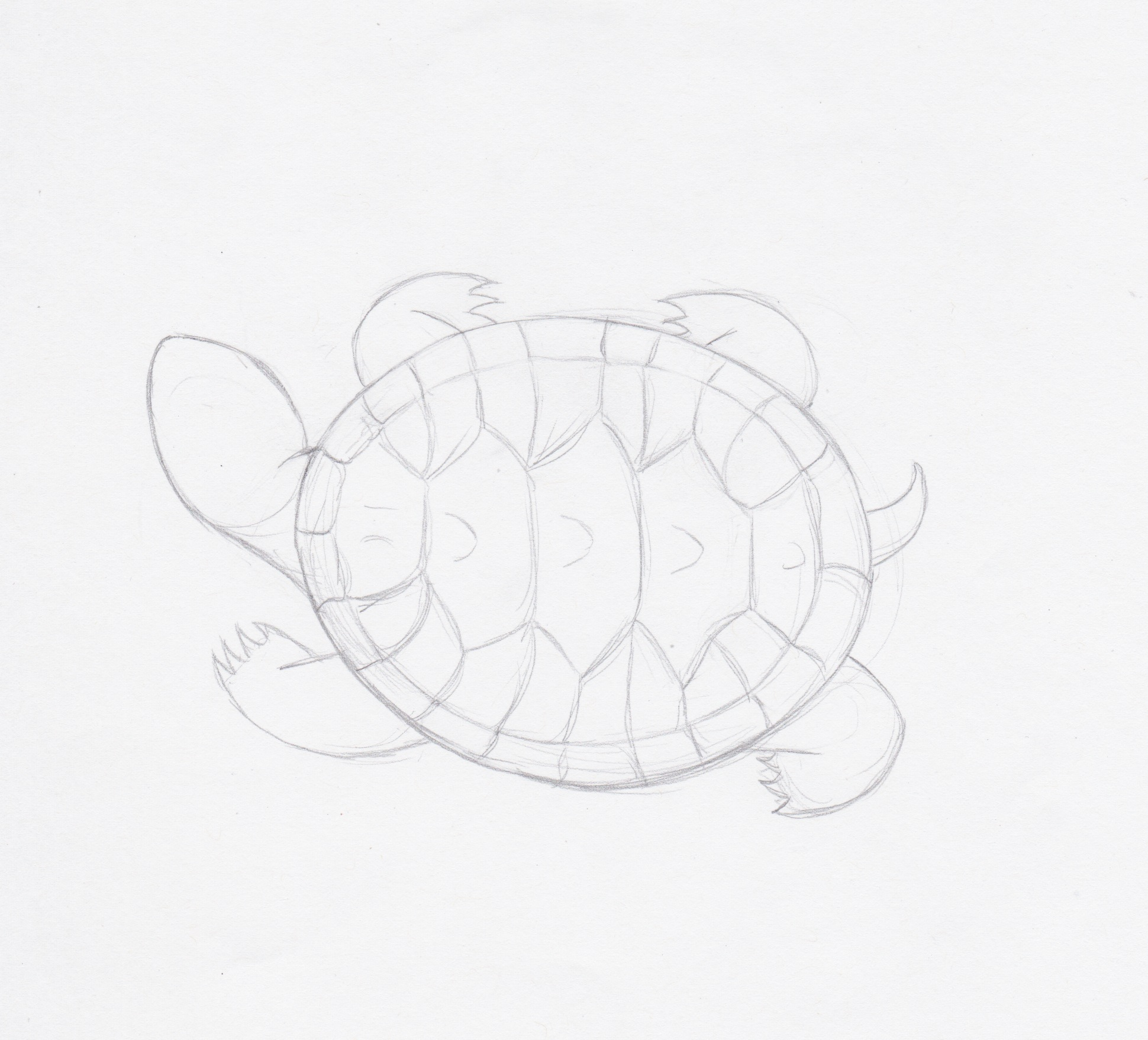 tortuga tatoo gallery of yinyang tattoos clipart turtle with tortuga tatoo simple tortuga. Black Bedroom Furniture Sets. Home Design Ideas